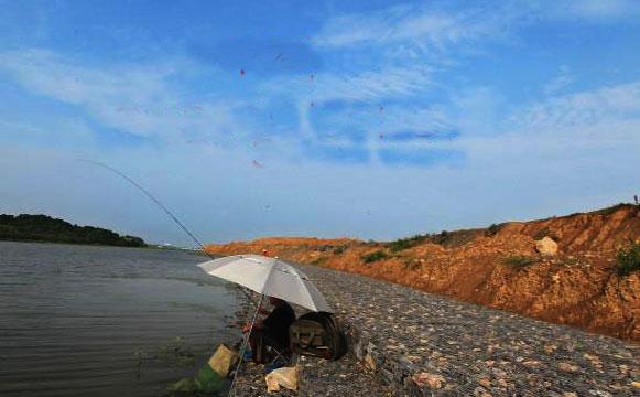 固滨笼工程景观图